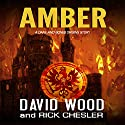 Amber: A Dane and Bones Origins Story: Dane Maddock Origins, Book 7 Audiobook by David Wood, Rick Chesler Narrated by Jeffrey Kafer