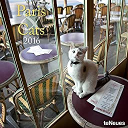 2016 Paris & Cats Wall Calendar
