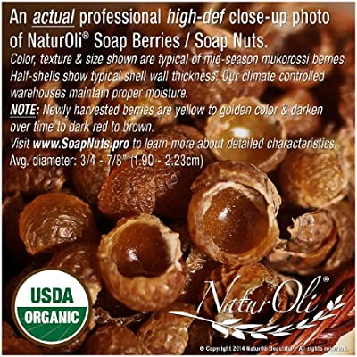 NaturOli Soap Nuts / Soap Berries. 15-25+ LOADS! - USDA Organic laundry soap, natural detergent & cleaner. Select seedless. Heavy-duty wash bag + 8-pg info & instr. (LARGER SIZE replacing 5-10 Load Samples. - BETTER VALUE!)