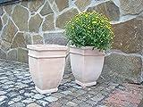 Blumentopf 32 cm hoch, echt Terracotta Terrakotta Garten...