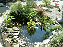 Free How to Make Your Own Backyard Pond Ebook & PDF Download