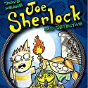Joe Sherlock: Kid Detective, Case #000004 - The Headless Mummy Audiobook by Dave Keane Narrated by Robert A.K. Gonyo
