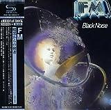 Black Noise by FM (2013-06-19)