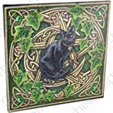 Pentagram Cat - Fantastic Design by Artist Lisa Parker - 28cm Canvas Picture on Frame Wall Plaque / Wall Art