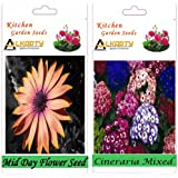 Alkarty Mid Day And Cineraria Mixed Flower Seed Pack Of 20 (Winter)