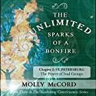 The Unlimited Sparks of a Bonfire, Chapter 2: St. Petersburg: The Power of Soul Groups Hörbuch von Molly McCord Gesprochen von: Steve White