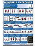 img - for Dumbbell Exercises-Shoulders & Arms Laminated (Poster) book / textbook / text book