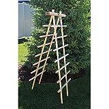 Gronomics LT 24-72 Ladder Trellis Kit, 24 by 72-Inch