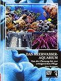 Das Meerwasseraquarium: Von der Planung bis zur erfolgreichen Pflege