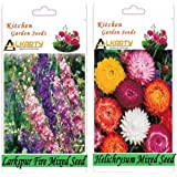 Alkarty Larkspur Fire Mixed And Helichrysum Mixed Seeds Pack Of 20 (Winter)