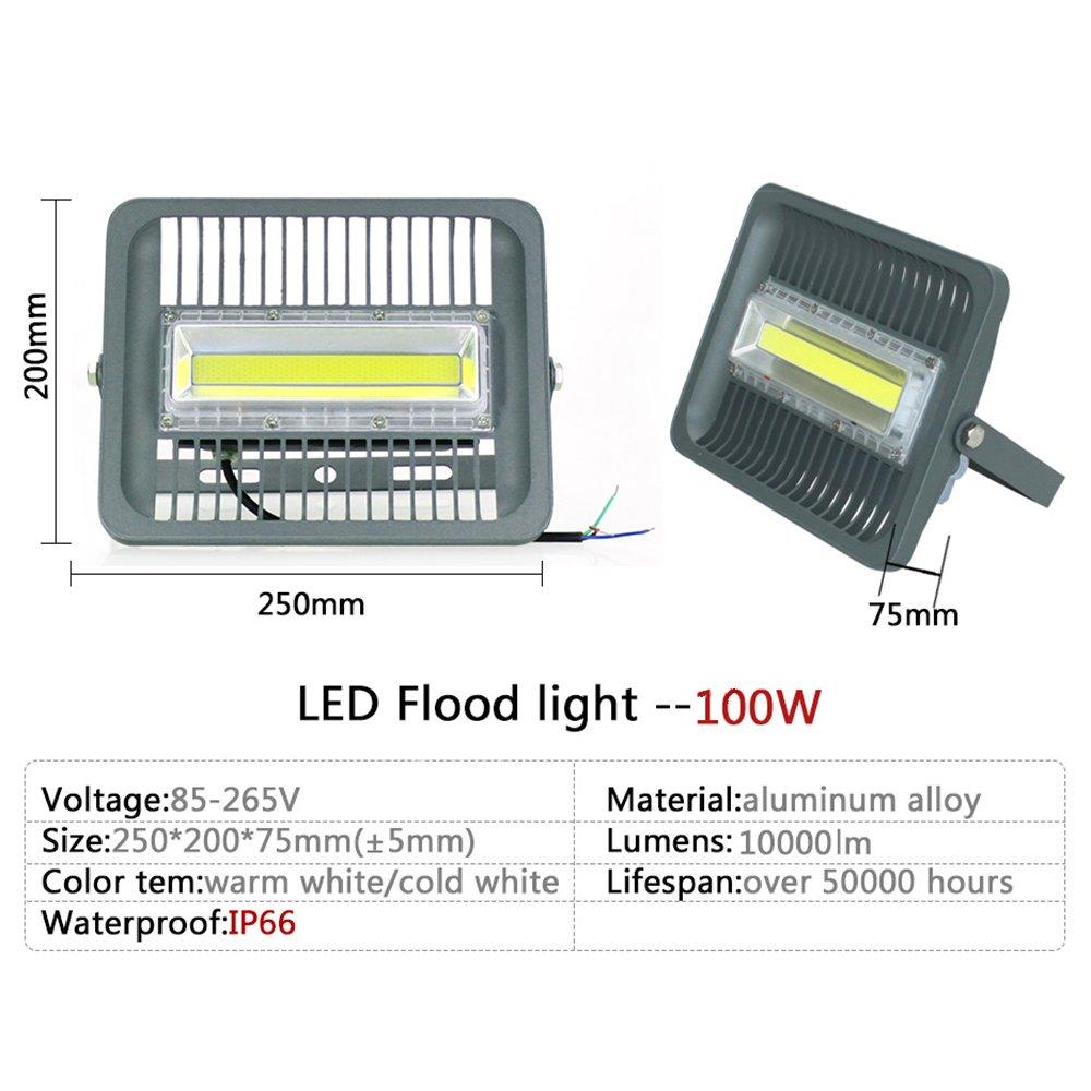 ASIGN 100W LED Cob Outdoor Flood Lights, Super Bright Work Lights 10000lm 600W Halogen Bulb Equivalent 6000K Daylight White IP66 Waterproof Security Light for Garage Yard