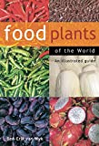 Food Plants Of The World: An Illustrated Guide