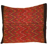 Laura Luna Textiles LL11-206 Chichi Pillow, 20-Inch by 20-Inch