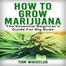 How to Grow Marijuana: The Essential Beginner's Guide for Big Buds Audiobook by Tom Whistler Narrated by Sam Slydell