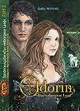 Eldorin - Das verborgene Land (Sonderausgabe Part II)