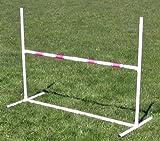 Practice Adjustable Jump