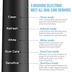 Sonic Toothbrush, LANDWIND Electric Toothbrush with 5 Brushing Heads, USB Charging, Smart Timer, 4 Charges for 1 Year, 5 Modes, IPX7 Waterproof for Unisex Adults (Black) (Color: Electric Toothbrush with 5 Brush Heads-Black)