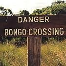 Danger Bongo Crossing