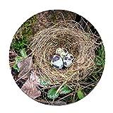 [FOR U DESIGNS]個性的な柄 円形 マット 滑り止め付き 保護マット mat 直径約60cm 鳥の巣柄3