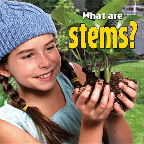 what-are-stems