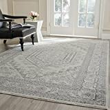 Image of Safavieh Adirondack Collection ADR108B Ivory and Silver Area Rug, 8 feet by 10 feet (8' x 10')