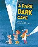 img - for A Dark, Dark Cave book / textbook / text book