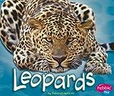 Leopards (African Animals)