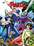The Phantom: The Complete Series - The Charlton Years Volume 4 (Phantom Comp Series Hc Charlton Years)