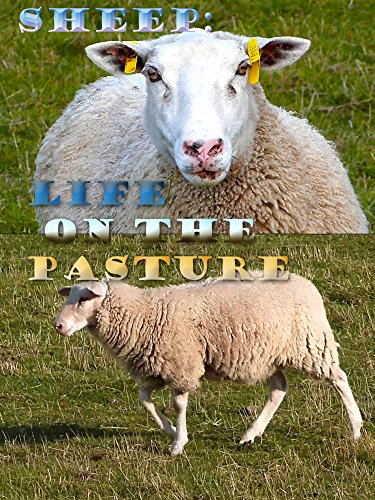 Sheep: Life on the Pasture on Amazon Prime Instant Video UK