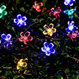 Solar String Lights Outdoor Flower Fairy Light 21ft 50 LED Multi Color Blossom Lighting Ebook Included for Christmas - Party - garden Decoration by Innoo Tech