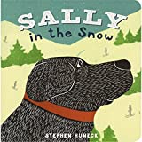 Sally in the Snow (Sally Board Books)