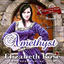 Amethyst: Daughters of the Dagger Series, Book 4 Audiobook by Elizabeth Rose Narrated by Brian J. Gill