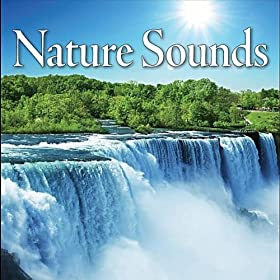 Nature Sounds Rainshowers And Country Waterfalls For