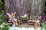 Pretmanns Fairy Garden Starter Kit: Miniature Figurine Bella And Friends (14 Pieces Set)