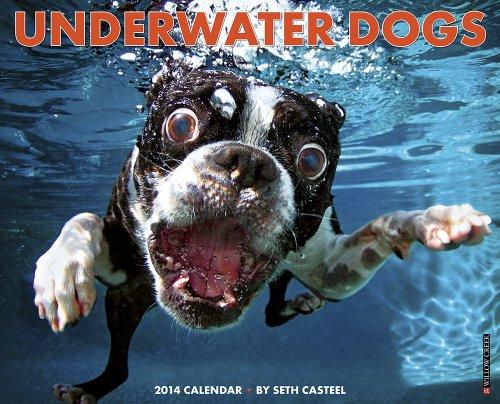Underwater Dogs Calendar 2014