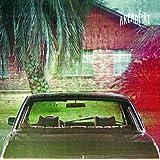 The Suburbs [Vinyl]