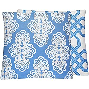Chloe & Olive Blew Me Away Collection Lattice Floral Designer Pillow Cover, 20-Inch, Blue