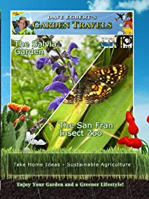 Garden Travels: The Salvia Garden and the San Fran Insect Zoo