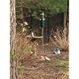 Birds Choice Classic Bird Feeder with Built-In Squirrel Baffle and Pole - Green