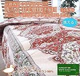 京都西川 シングルサイズ 洗える 羽毛肌掛け布団(日本製)ハンガリー産ホワイトダウン90% 0.3kg