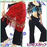 ☆BC2091 バラメッシュフリンジ三角ヒップスカーフ |ベリーダンス 衣装|ダンス衣装|コスチューム|ヒップスカート|ショール|腰巻き|練習着|レッスン着|レッスンウェア|ステージ衣装|オリエンタル衣装