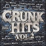 Crunk Hits 2