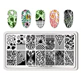 Summer Fruit Nail Art Stamping Template Tropical Punch Pattern Rectangle Image Plate Stamping Polish Needed BP-T-L003 (Color: BP-T-L003)