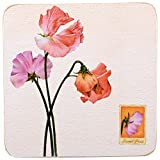 Creatie Tops Sweet Pea Corkback Traditional Coasters, Set of 6