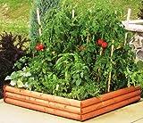 "Greenes Raised Garden Bed 4'x4'x9"""