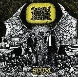 echange, troc Napalm Death - Scum