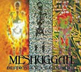 Destroy Erase Improve by MESHUGGAH (2013)