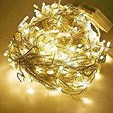 Wentop 10M 100 LED フェアリーストリングライト クリスマス、結婚式、パーティデコレーション ウォームホワイト