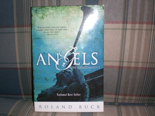 download angels on assignment by roland buck