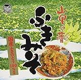 穂高観光食品 ふきみそ 箱(100g×2) 200g